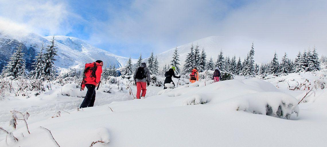 Montaña Nieve Granada