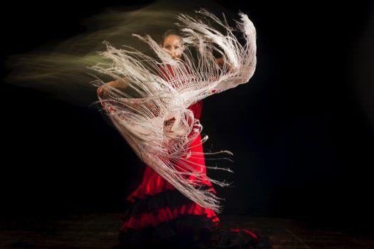 Flamenco - Viajes a Andalucía